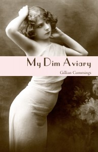 My Dim Aviary cover - 1 of 1